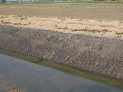 Canale di Bonifica - Geocomposito Antinutria Antigambero - posa